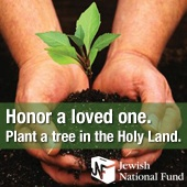 Link to Plant Trees in the Holy Land